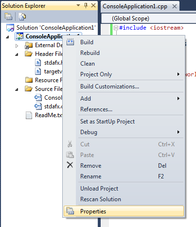 The project's context menu as seen in the Solution Explorer pane.